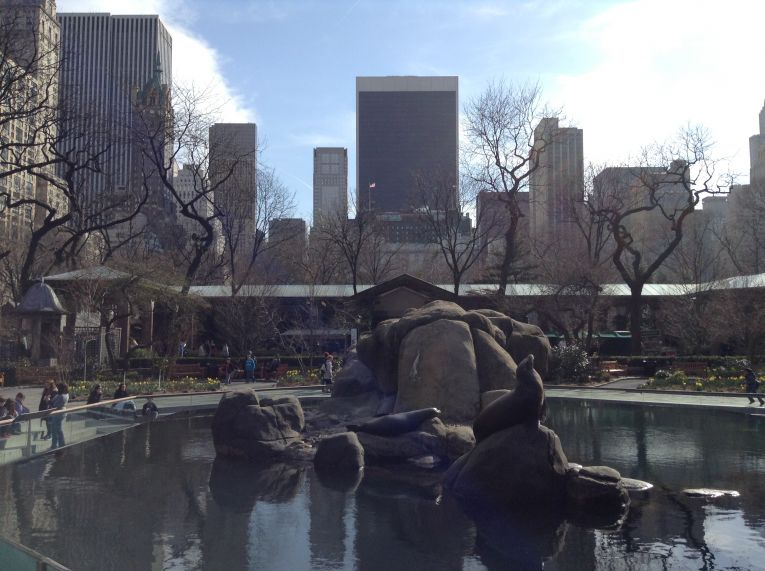 Zoo Central Park - web